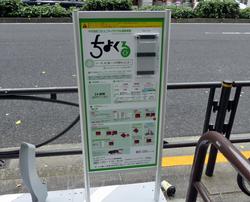 P1080017cycle01.jpg